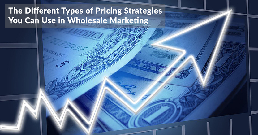 The Different Types of Pricing Strategies You Can Use in Wholesale Marketing