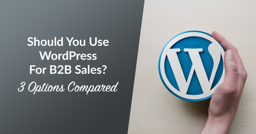 Should You Use WordPress For B2B Sales? (3 Options Compared)